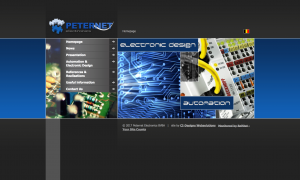 Peternet Electronics Website 2008